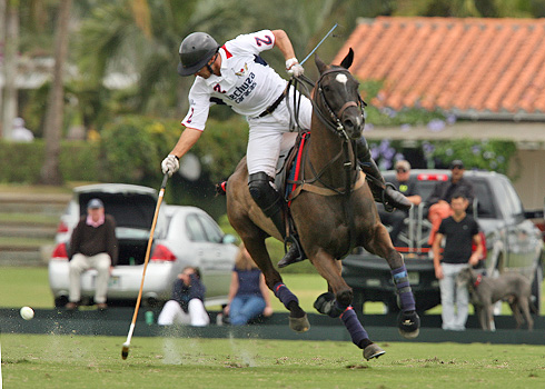 the polo magazine polo photos alex pacheco audi polo team lechuza polo team ipc polo club 2