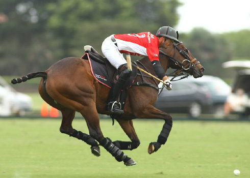 the polo magazine polo photos alex pacheco audi polo team lechuza polo team ipc polo club 3