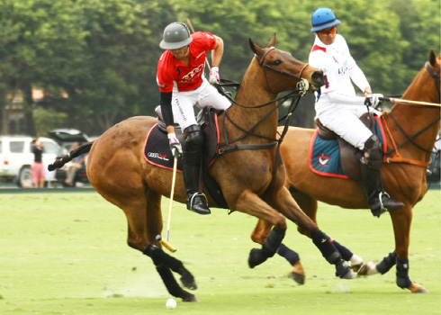 the polo magazine polo photos alex pacheco audi polo team lechuza polo team ipc polo club 4