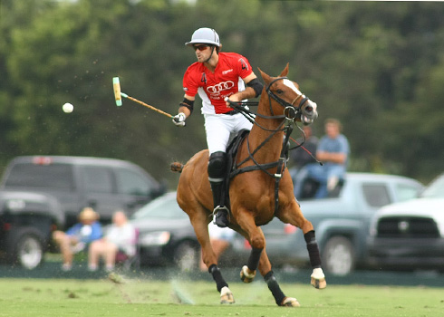 the polo magazine polo photos alex pacheco audi polo team lechuza polo team ipc polo club 5
