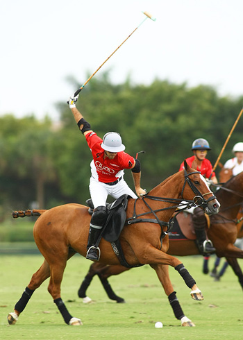 the polo magazine polo photos alex pacheco audi polo team lechuza polo team ipc polo club 6
